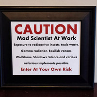 Mad Scientist Door Sign. Geek Art Print. Funny Art Print.