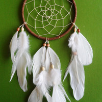 Dream Catcher - Bohemian - White and Brown - Modern