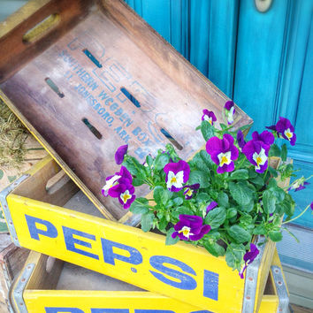 1- Pepsi, crate, soda, box, storage, decor, garden, kitchen, home decor
