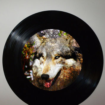 Wolf Record Art, Recycled Wolf Room Decor, Upcycled Nature Art, Gray Wolves Artwork, Home Decor, Apartment Decor, Wolf Art, Wolves Pictures
