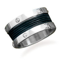 Stainless Steel and Rubber Ring