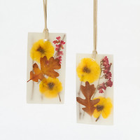 Pressed Flower Sachets, Black Vetiver & Oak