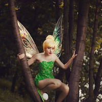 Tinkerbell Large Iridescent Fairy Wings