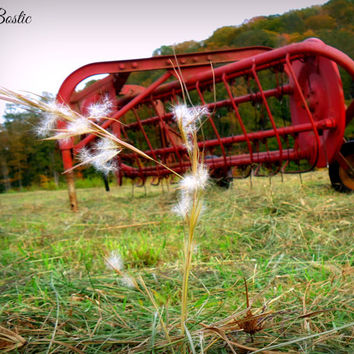 8x10 Antique Old Farm Equipment Hay Rake Photo Print Country Primitive Decor Country Photography Country Pictures Farm Photos