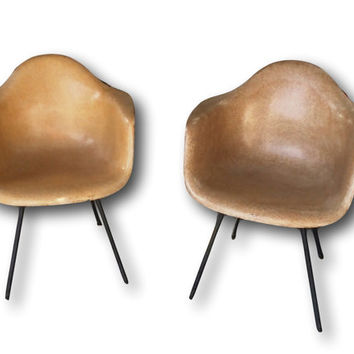 Two Original Production First Generation Eames Miller Armchair Fiberglass Parchment Zenith Chair