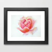 Primrose Framed Art Print by Susaleena