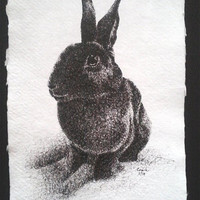 "6"" x 9"" Pen Drawing of Black Bunny Rabbit Mounted and Matted to 11"" x 14"" READY to SHIP"
