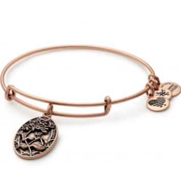 Search results for: 'Sister Charm Bangle'
