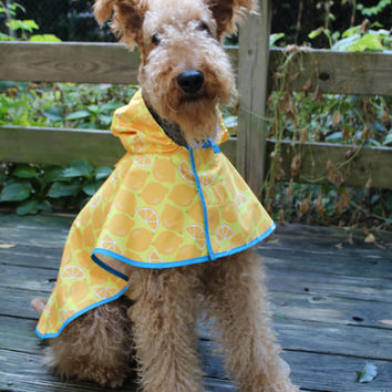 Designer's Cute Dog Raincoat(for Large Breed and all sizes are available)