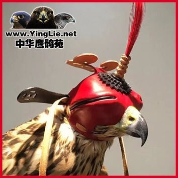 Universal Genuine Leather Traditional Shading Eye Mask Eagle Hat Falcon Hood Lens Hood Headgear for Golden Eagle Saker Falcon