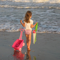 Shell Collection Beach Bag or Pool Toy bag by Rugrat Design Mesh bag with fabric strap