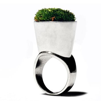 Growing Ring