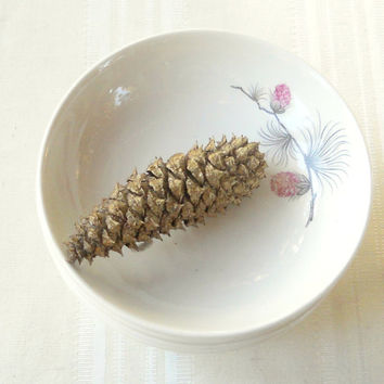 Vintage Cottage Chic Berry Bowls, Set of 5, Canonsburg Potteries, Sky Line, Pink Thistle