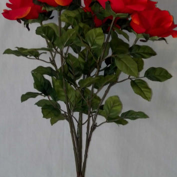 Red Rose Bush - 23 Inches Tall