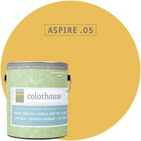 Paint by Colorhouse ASPIRE .05