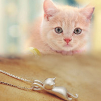 Womens Cute Cat Necklace + Gift Box Jewelry-79