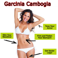 ABC garcinia cambogia lose weight slim creams, fast weight loss slimming products, SAY NO TO DIET PILLS