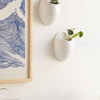 Eco Pod Wall Planter Set