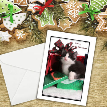 "Greeting Card, Christmas Card, Merry Christmas, Kitten, Photographic Fine Art, 5""x7"" Card, Greeting Cards, Stationary, Nancy G Photography."