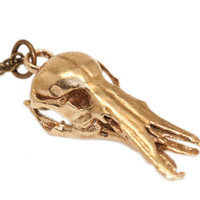 Platypus Skull Necklace Animal Skull Oddities Jewelry Bronze Pendant