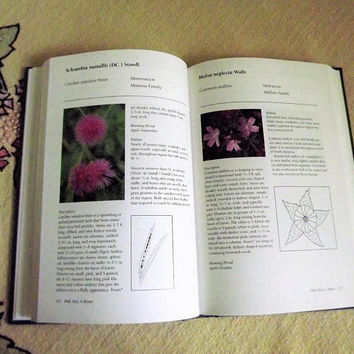 Wild Flower Book, Vintage Wildflower Field Guide, Hardback Garden Reference Book, Roadside Flowers of the Southern Great Plains