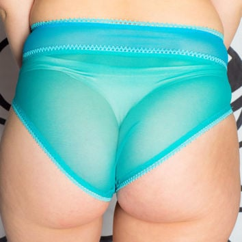 Sheer High Waisted Panties - Macaroon