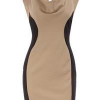 Mocha side panel dress - View All - Dresses - Dorothy Perkins