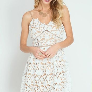 Dakota Fit and Flare Lace Dress