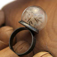 Dandelion clock seeds adjustable dome statement ring- dandelion wishes- great spring jewellery