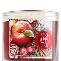 3-Wick Candle Spiced Apple Toddy