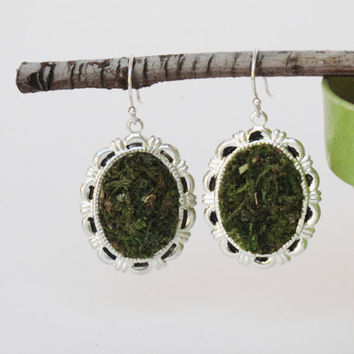 Moss Earrings, Eco Friendly, Terrarium Jewelry, Earth Day, Living Plant Jewelry, Garden, Mother's Day