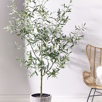 Faux Potted Olive Tree - Indoor Living