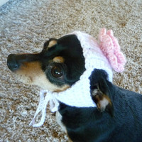 Girl Dog Hat CROCHET PATTERN Flower Dog Hat Rose Dog Hat Girly Dog Hat for a Dog Accessories Dog Supplies Dog Photography Prop Photo Prop