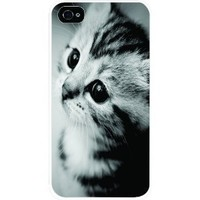 TabTM Cute Kitten Cat Novelty White Hard Snap on Case Cover for Apple Iphone® 4 & 4s Universal: Verizon - Sprint - At&t - Great Affordable Gift!