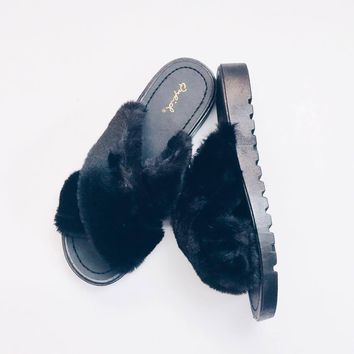 Fur Ever Slides