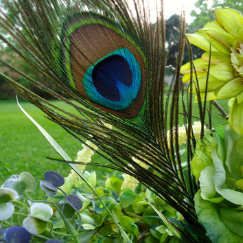 "Rustic Metal Planter Floral Table Arrangement - ""Green with Envy"", Centerpiece, Peacock feathers, Aqua-Blue-Green, Home Decor"