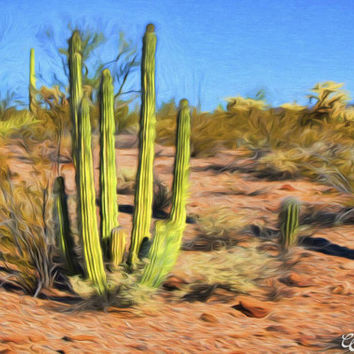 Organ Pipe Saguaro Desert Landscape Fine Art Photography Painting Print 12x18 Arizona Spring Season Photo Painting Print