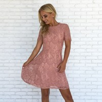 Fall Breeze Lace Skater Dress in Pink