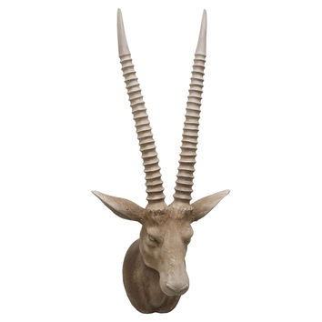 Antelope Head Wall Decor, Natural, Antlers, Horns, Taxidermy & Faux-Taxidermy