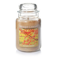 Autumn Woods™ : Large Classic Jar Candles : Yankee Candle