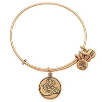 tangledalex and ani - Google Search