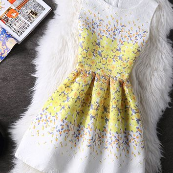 Streetstyle  Casual Round Neck Inverted Pleat Floral Printed Gorgeous Skater Dress