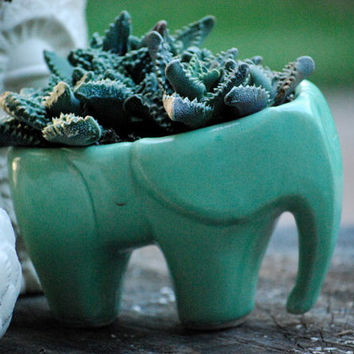 Best Elephant Planter Products On Wanelo