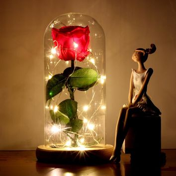 PreservedFreshFlower Beauty and The Beast Rose with Dome Preserved Rose Metal Rose Enchanted Rose Handmade Rose with LED Lights