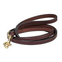 Dog Leash | Dover Saddlery