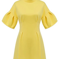 Yellow Funnel Collar Short Ruffled Sleeve A-Line Mini Dress