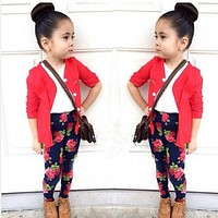 Toddler Girls  3 piece outfit