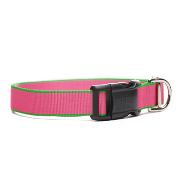 Personalized Chelsea Dog Collar | Pink and Green