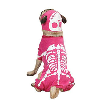 "Casual Canine Glow Bones Costume for Dogs, 20"" Large"