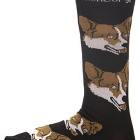 WELSH CORGI SOCKS